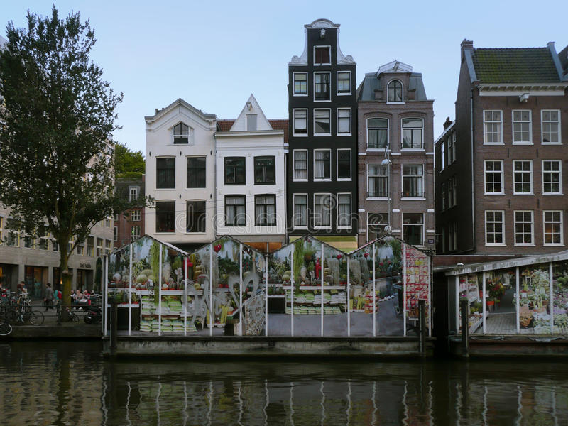 Amsterdam old city buildings royalty free stock image