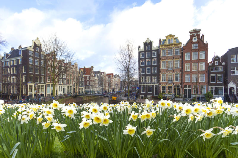 Amsterdam cityscape royalty free stock image