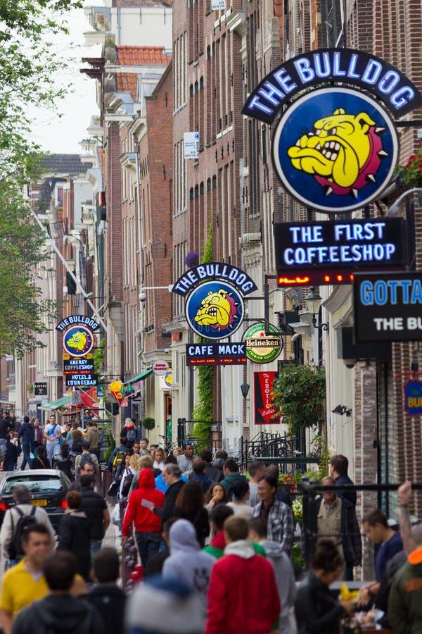 Amsterdam Coffeeshop fotografia royalty free