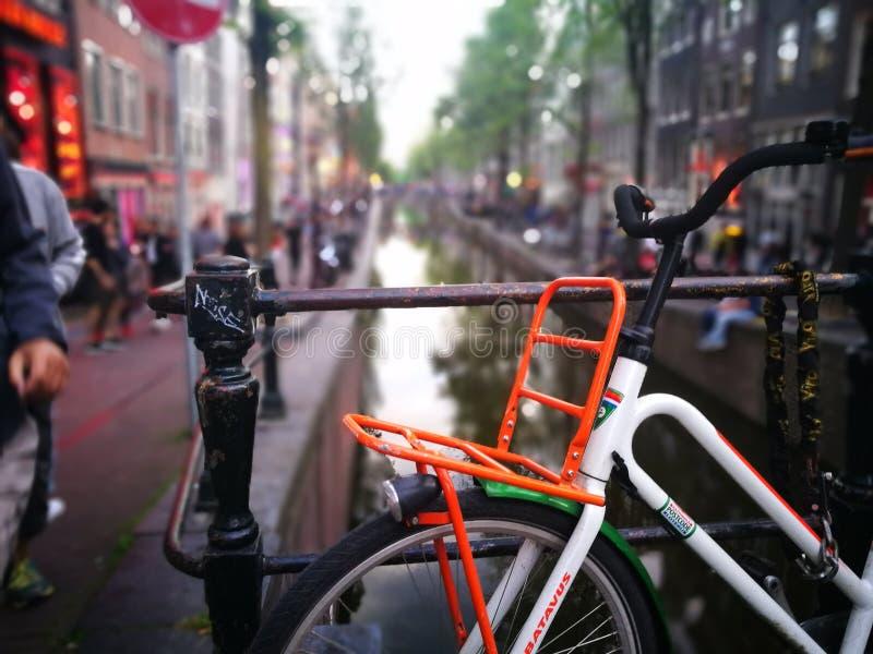 amsterdam cykel royaltyfri foto