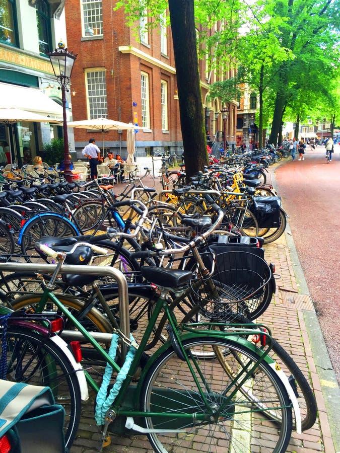 Amsterdam cyklar royaltyfri fotografi