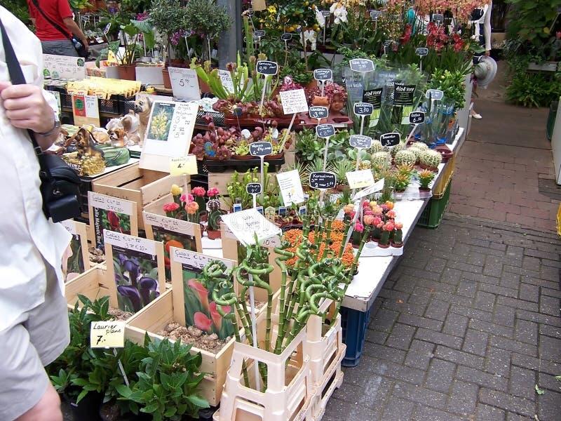 AMSTERDAM, die NIEDERLANDE - Leute auf Blumenmarkt am 4. August 2009 Dieses ist der einzige sich hin- und herbewegende Blumenmark stockfotografie