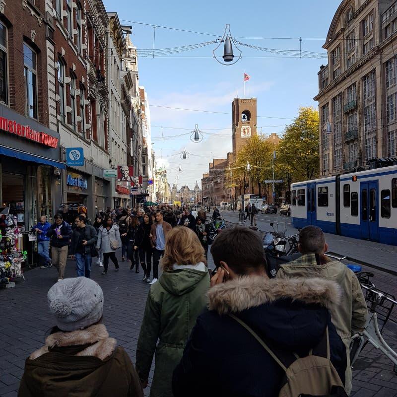 Amsterdam ferie royaltyfria bilder