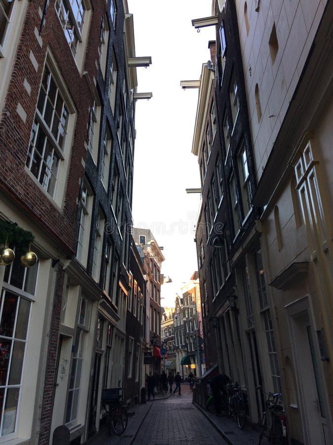 Amsterdam gatahus i en liten gränd royaltyfria bilder
