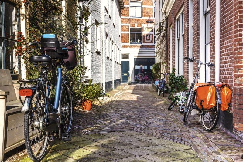 Amsterdam green street life royalty free stock image