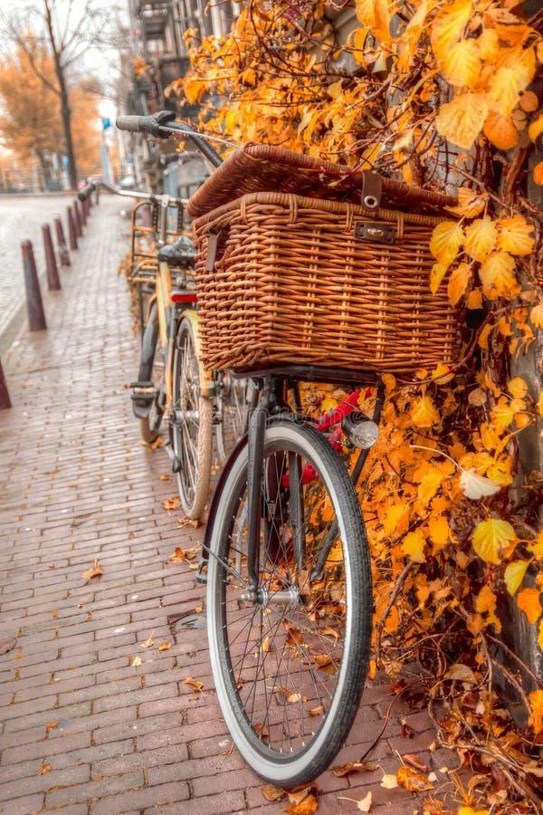 Amsterdam höst arkivfoton