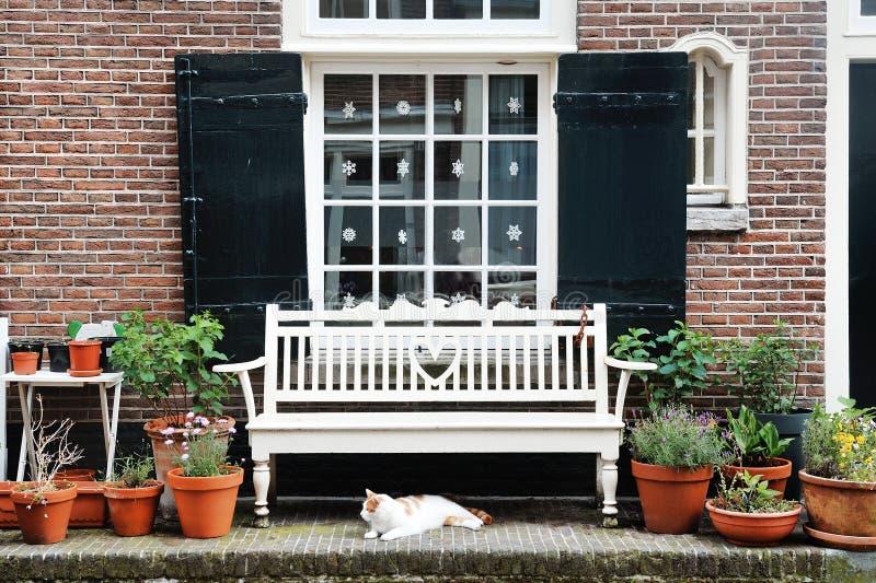 Amsterdam, Holanda, Europa - una fachada del edificio, una ventana, un banco blanco y un gato fotos de archivo libres de regalías