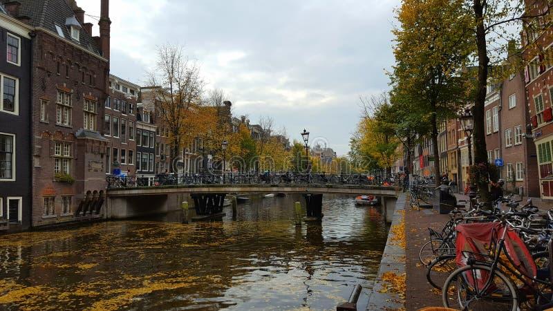 Amsterdam kanal royaltyfria foton