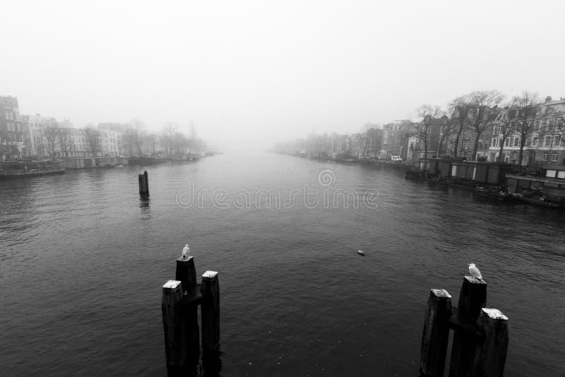 Amsterdam kanal med dimma Dag med mycket dimma i en Amsterdam fotografering för bildbyråer