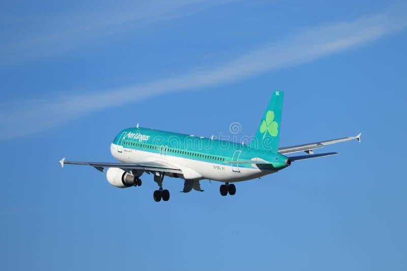 Amsterdam les Pays-Bas - 24 mai 2019 : EI-DEC Aer Lingus Airbus A320-200 photos stock