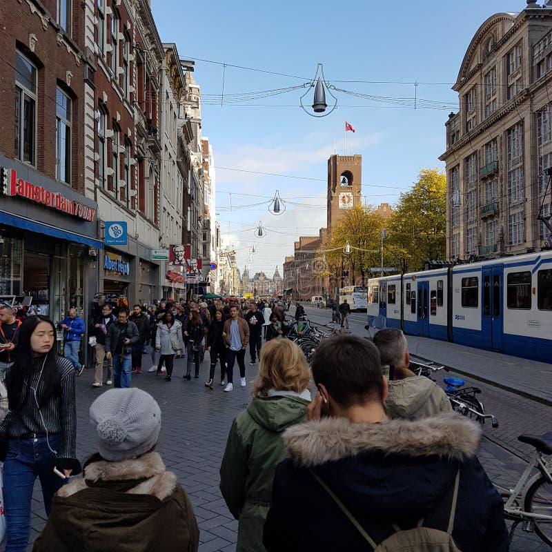 Amsterdam Lezeplain royaltyfri foto