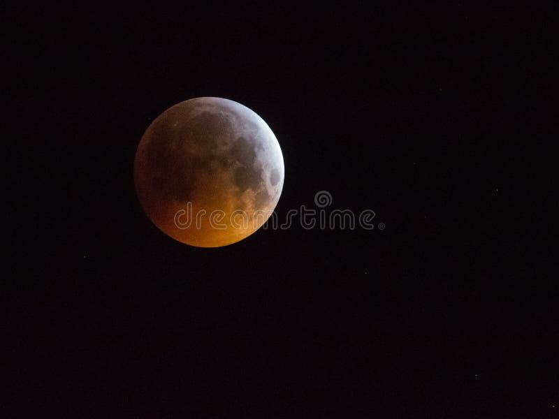 Amsterdam, los Países Bajos - 21 de enero de 2019: Luna estupenda del lobo de la sangre, eclipse de la luna en el cielo imagenes de archivo