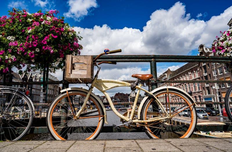 Amsterdam NEDERLÄNDERNA, AMSTERDAM: AUGUSTI 8, 2016: royaltyfria foton