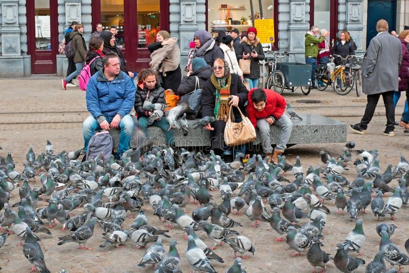 AMSTERDAM NEDERLÄNDERNA - JANUARY6, 2018: Matning av duvorna på Da fotografering för bildbyråer