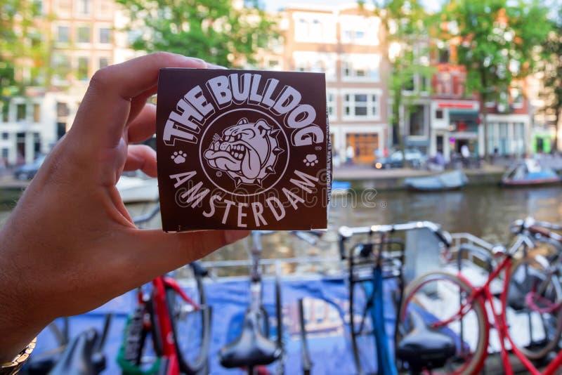 AMSTERDAM, NEDERLAND - 10 JUNI, 2014: De hand houdt marihuana cupcake van de winkel van de Buldogkoffie stock afbeelding