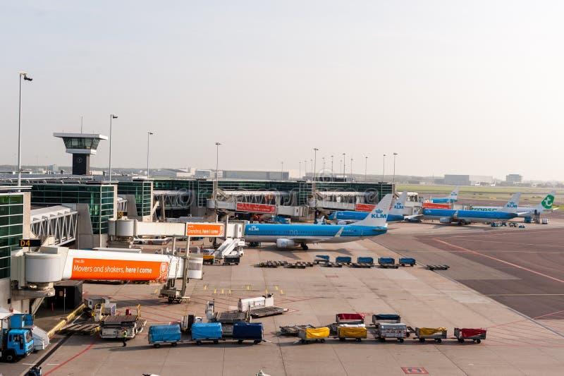 AMSTERDAM NETHERLAND - OKTOBER 18, 2017: Internationell Amsterdam flygplats Schiphol med flygplan i bakgrund Beskåda däckplac royaltyfri fotografi