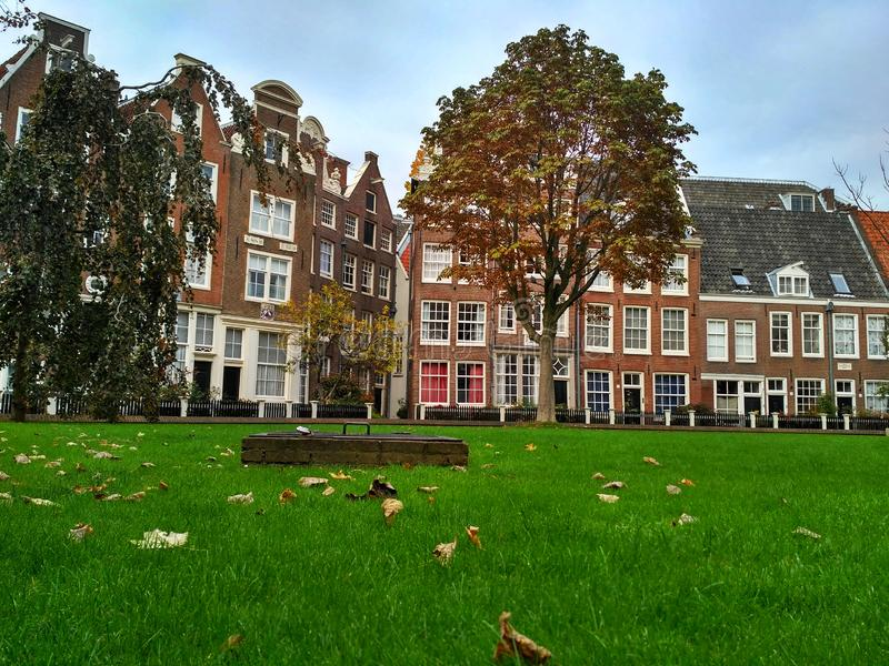 Amsterdam / The Netherlands - October 30 2016: Old yard Begijnhof with houses and garden royalty free stock images