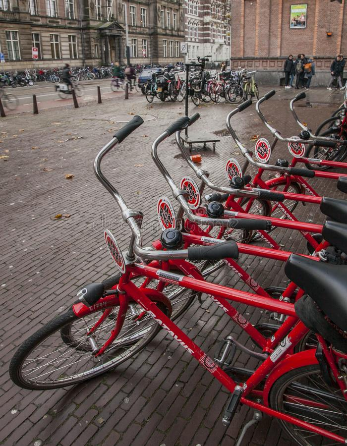 Amsterdam, the Netherlands - streets and red bikes. This image shows a view of a street in Amsterdam, the Netherlands. It was taken on a sunny day in November royalty free stock photo