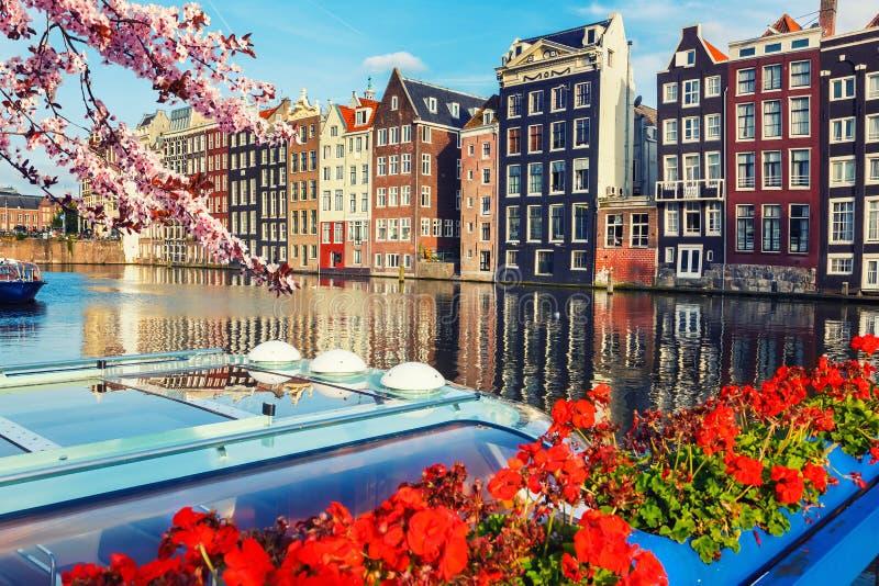 Amsterdam på våren royaltyfri fotografi