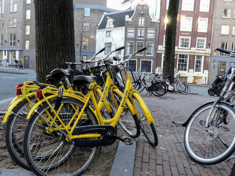 Amsterdam, Pays-Bas - 12 décembre 2018 : Location jaune de bicyclette de vélo dans Amstetdam 3 vélos de location enchaînés à un l photo stock
