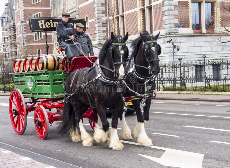 Amsterdam, Pays-Bas - 24 mars 2016 - Char à bières tiré par les chevaux images stock