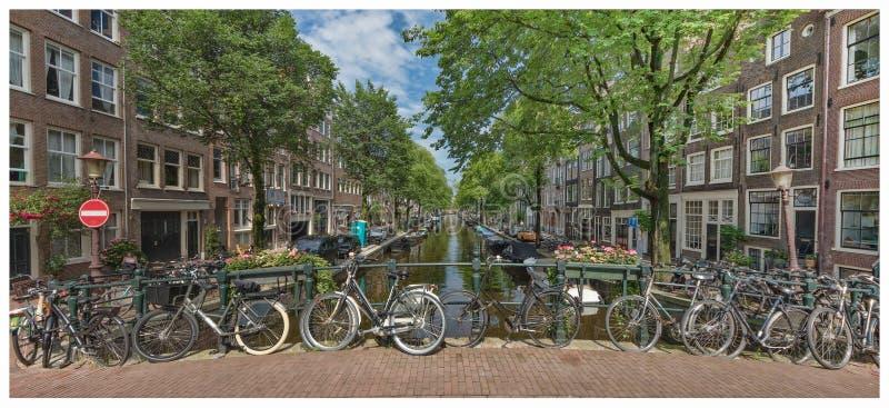 Amsterdam podczas lata obraz royalty free