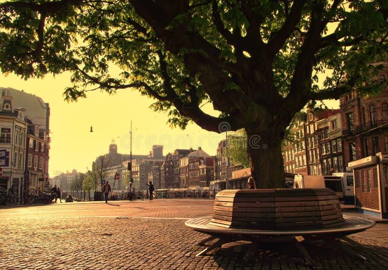 Amsterdam por la mañana de la primavera imágenes de archivo libres de regalías