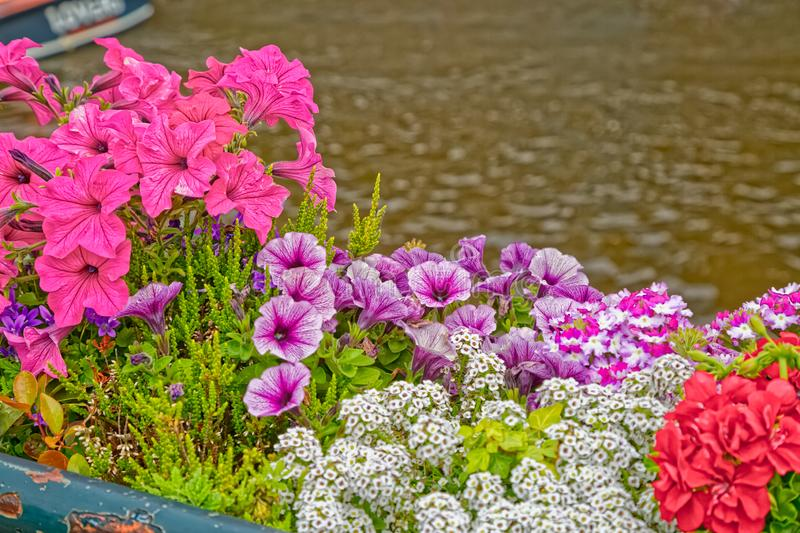 Amsterdam river canal with flowers on the fence detail royalty free stock photos