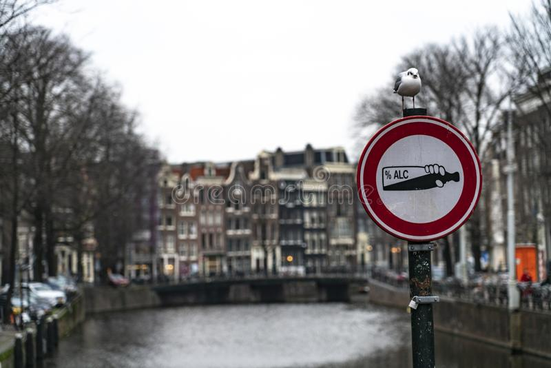 Amsterdam a road sign with a seagull resting. Amsterdam Holland Amsterdam Holland The city of Amsterdam, capital of the Netherlands, is built on a network of stock photos