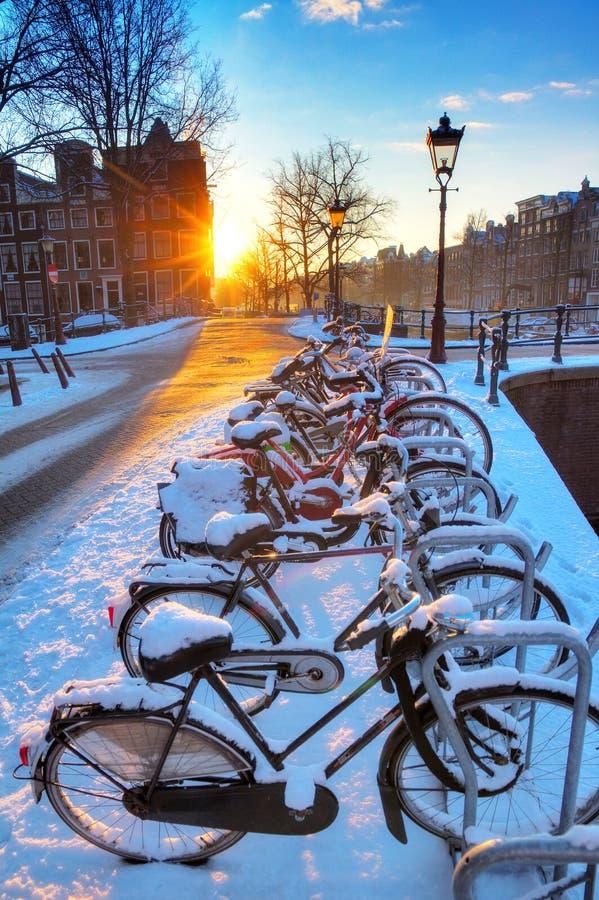 Amsterdam snöcyklar royaltyfri bild