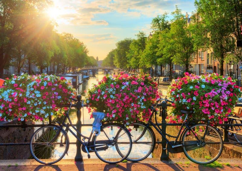Amsterdam-Sommersonnenaufgang II lizenzfreie stockfotos