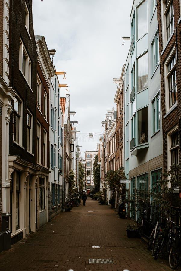 Amsterdam Stara Grodzka ulica obraz royalty free