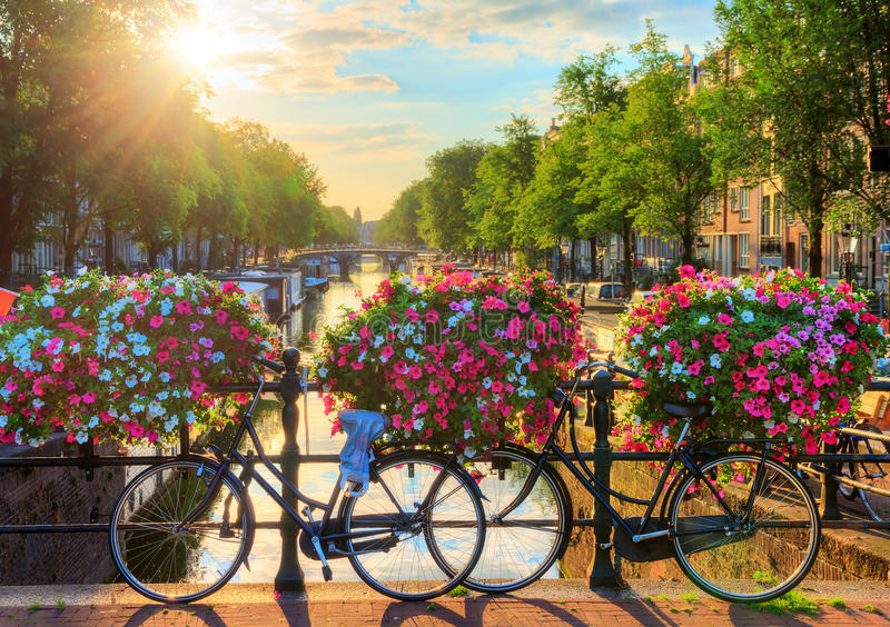 Amsterdam summer sunrise II. Beautiful summer sunrise on the famous UNESCO world heritage canals of Amsterdam, The Netherlands, with vibrant flowers and bicycles royalty free stock photos