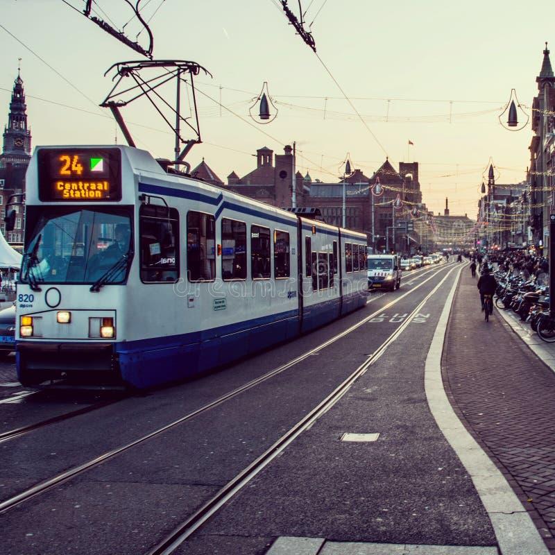 amsterdam tramwaj zdjęcie royalty free