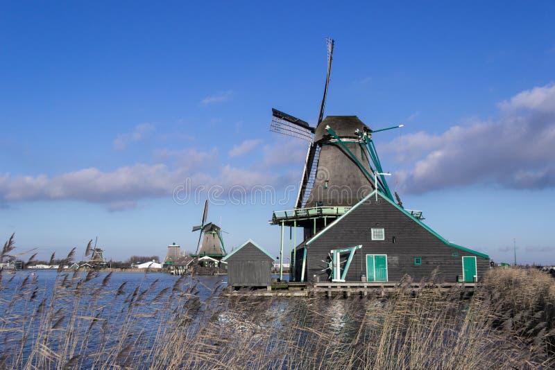 Amsterdam väderkvarn arkivfoton