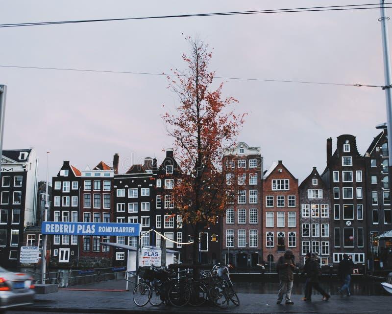 Amsterdam w zimie zdjęcia royalty free
