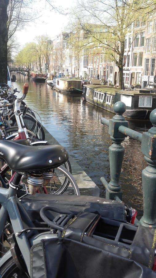 Amsterdan自行车 免版税库存图片