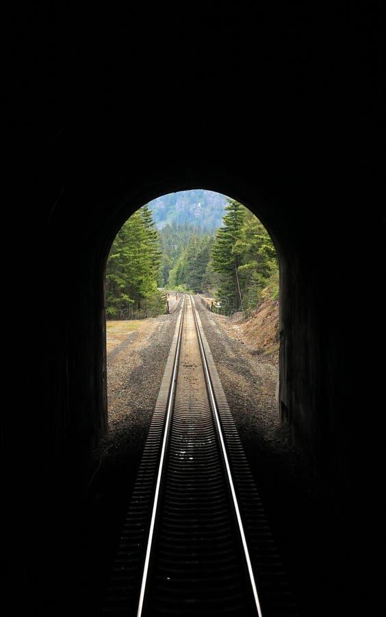 Amtrak till och med kaskadtunnelen i Montana royaltyfri bild