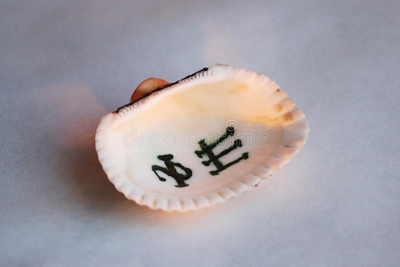 Amun Bastet, Sigil, painted on the sea shell in the ancient Egyptian language for luck, knowledge and friendship. Sigil is a symbol or a combination of several royalty free stock photography