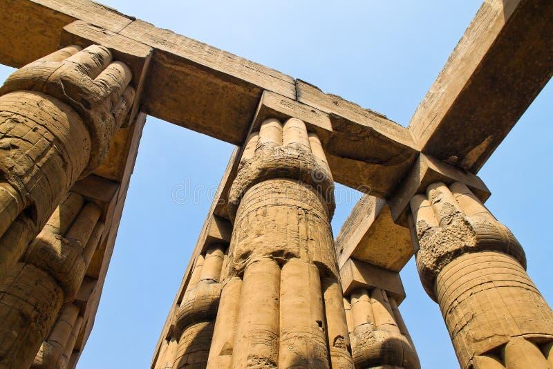 amunegypt luxor tempel arkivbild