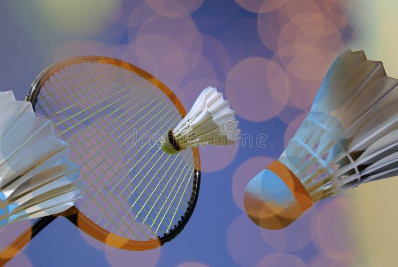 Amusement de badminton images libres de droits