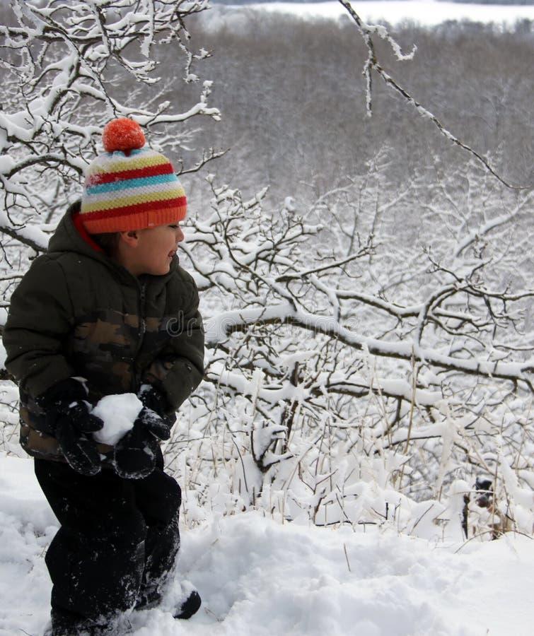 Amusement de neige d'hiver dans la prairie, images libres de droits