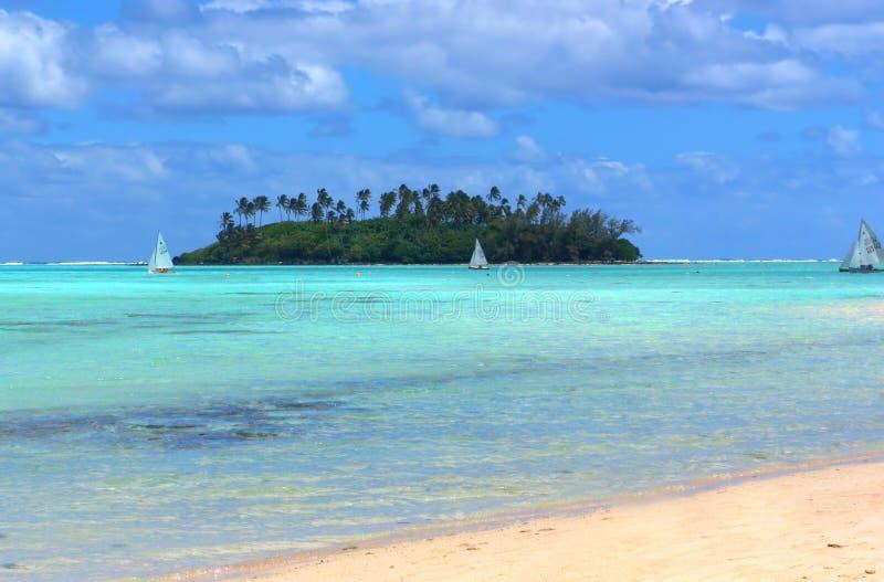 Amusement tropical photographie stock