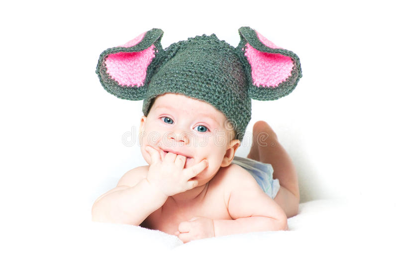 The amusing kid. A little mouse on a white background stock images