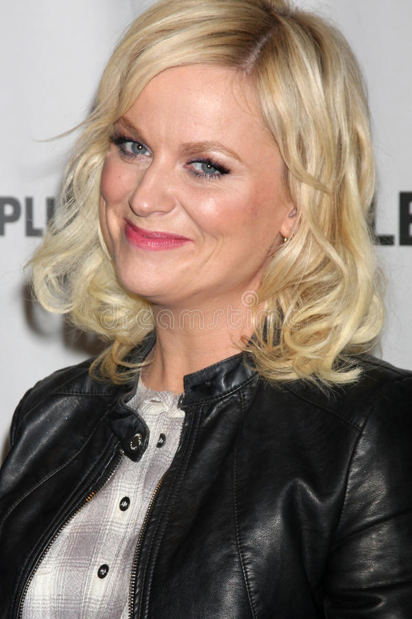 Download Amy Poehler editorial photography. Image of panel, march - 23751557