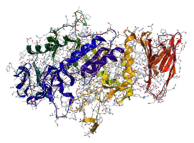 Amylase-alpha d'enzymes illustration stock
