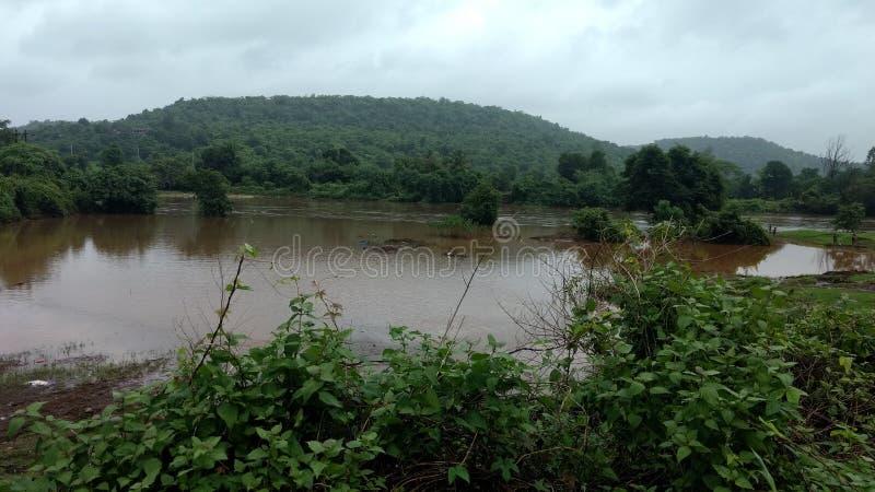 Amzing natura w deszczowych dniach obraz royalty free