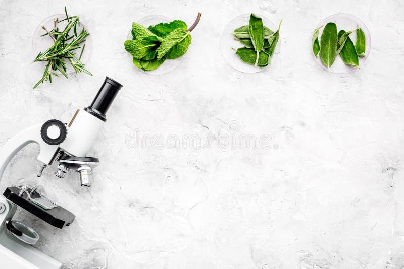 Análise de alimento Os inseticidas livram vegetais Ervas alecrins, hortelã perto do microscópio no espaço cinzento da cópia da op foto de stock royalty free