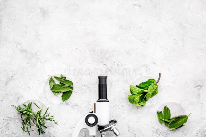 Análise de alimento Os inseticidas livram vegetais Ervas alecrins, hortelã perto do microscópio no espaço cinzento da cópia da op imagens de stock