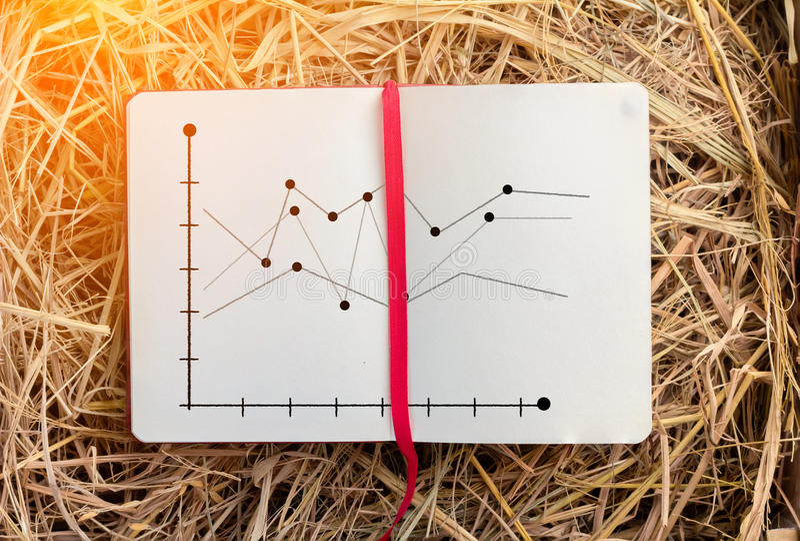 Análise do gráfico de negócio no caderno com textura do feno jpg imagens de stock royalty free